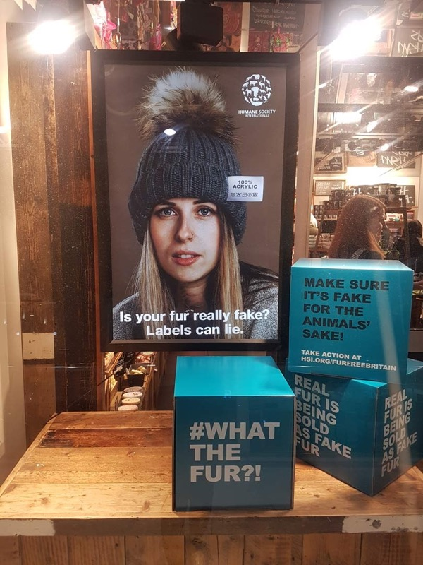 "Escaparate Campaña ""What the fur?"""
